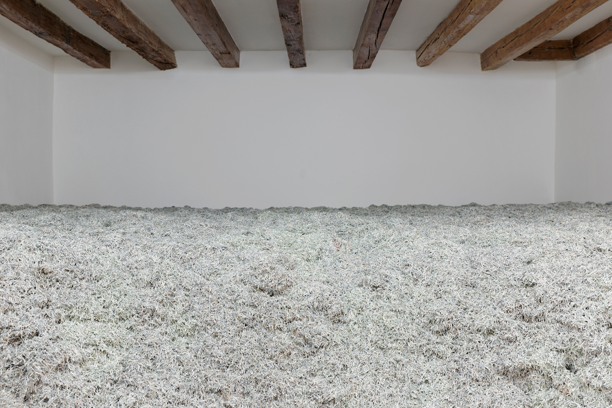 Christodoulos Panayiotou, 2008, 2008, shredded paper (Cypriot pounds), dimensions variable. Two Days After Forever – Cyprus Pavilion at the 56rd International Art Exhibition – La Biennale di Venezia. Photograph by: Aurélien Mole.